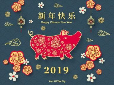 Year of the Pig, pain, massage, therapy, medicine, health, wellness, benefits, day, yoga, healing, acupuncture, treatment, needles, cupping, center, balance, practice, acupunctureneedles, westlake village, california